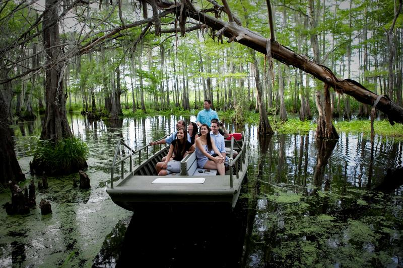 72 Hours in New Orleans – Cajun Encounter New Orleans Swamp Tour Review