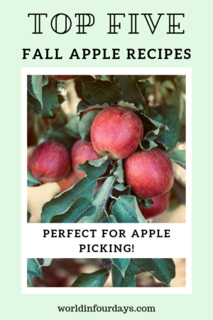 Best Fall Apple Recipes You Can Make At Home